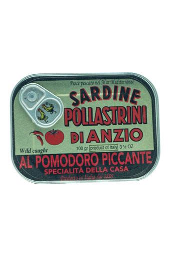Sardinen in pikanter Tomatensauce